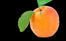 Delicious Apricot Juice