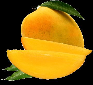 Super Fruit Mango History | Fruit Juices