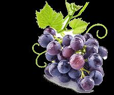 Grape Juice Nutrition – Réal Fruit Power