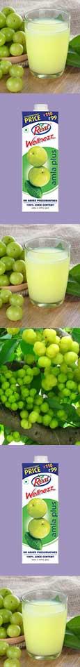 Amla Fruit Juice Mocktail Recipe
